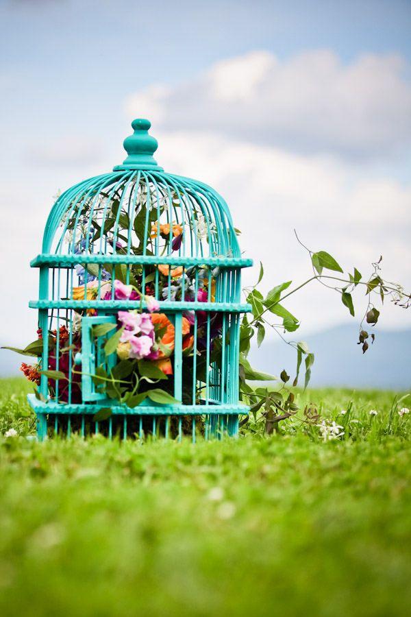 Jaula de pájaro y Flores